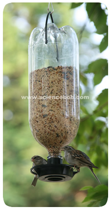 Bird Feeder Out Of Plastic Bottle Feeders
